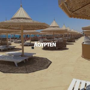 Link zur mehr Infos für einen Urlaub in Ägypten