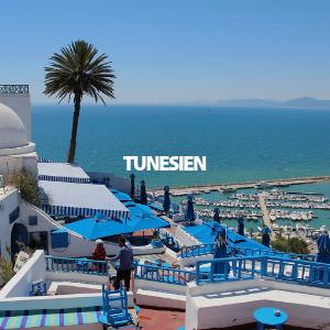 Link zur mehr Infos für einen Urlaub in             Tunesien